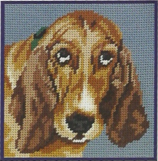 DMC Tapestry Kit - Basset (C884K)