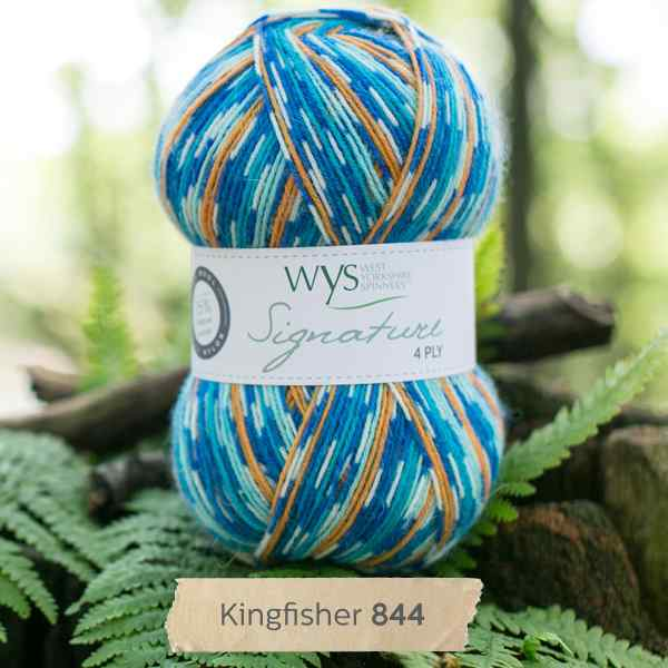 WYS Signature 4ply Country Birds Kingfisher 844