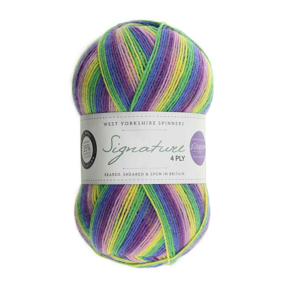 WYS Signature 4ply Winwick Mum 872 Wildflower