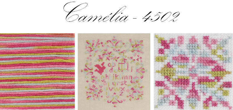 DMC Coloris shade 4502 Camelia